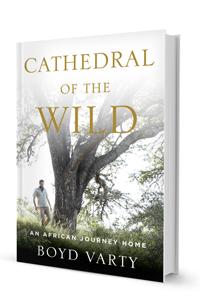 Cathedral-of-the-Wild Boyd Varty